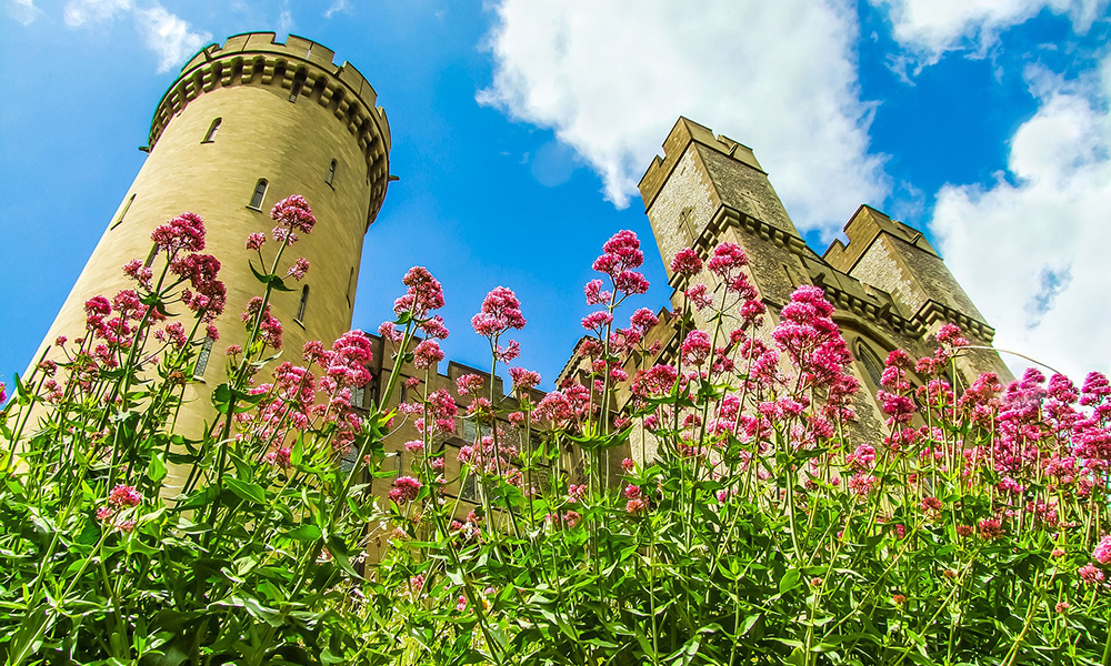 Explore the historic Arundel Castle and its expansive gardens...