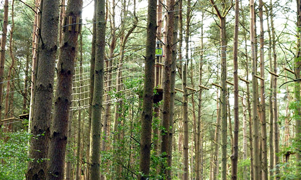 For treetop adventures, Go Ape's Crawley course is full of thrills and spills